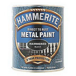 250ml Direct To Rust Hammered Metal Paint Black