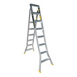 Warthog Ladder 180kg 2.4-4.5m