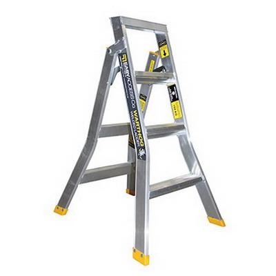 Warthog 4 Step Extension Ladder