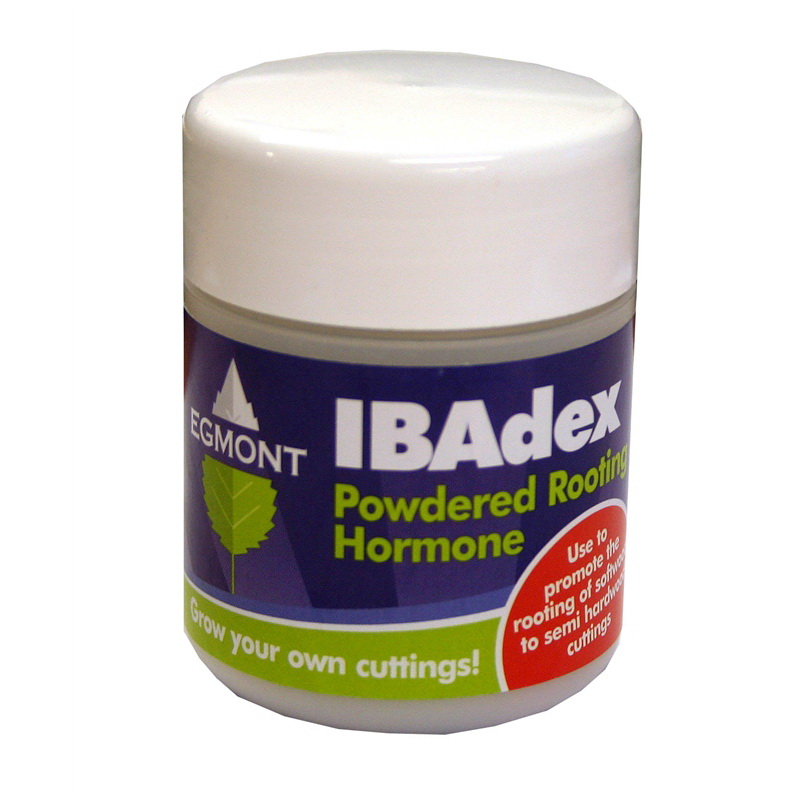 Ibadex Powdered Rooting Hormone 25g