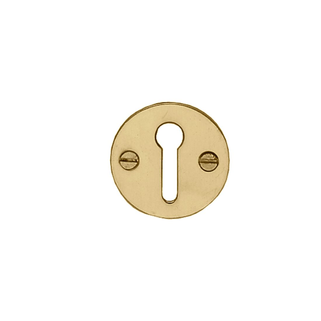 Escutcheon Uncovered Polished Brass